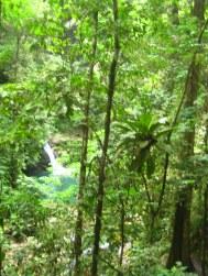 Zie de waterval schijnt door de bomen...