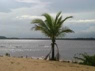 Tropisch rivierstrandje