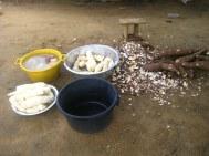 Cassave klaarmaken
