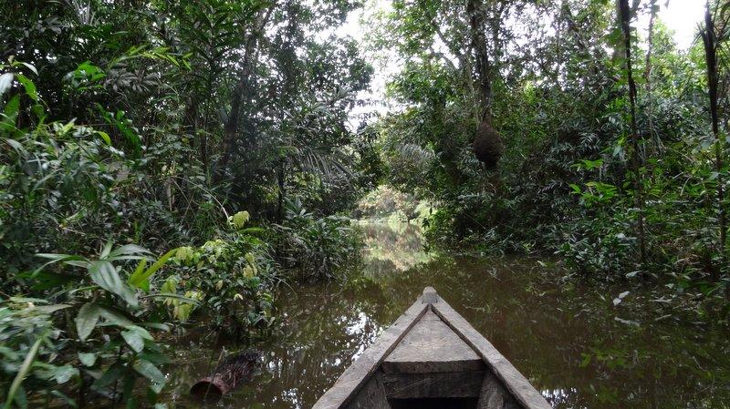 rio Amacayacu