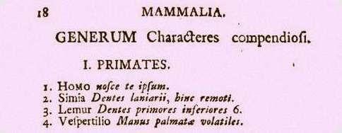 systema naturae 1760